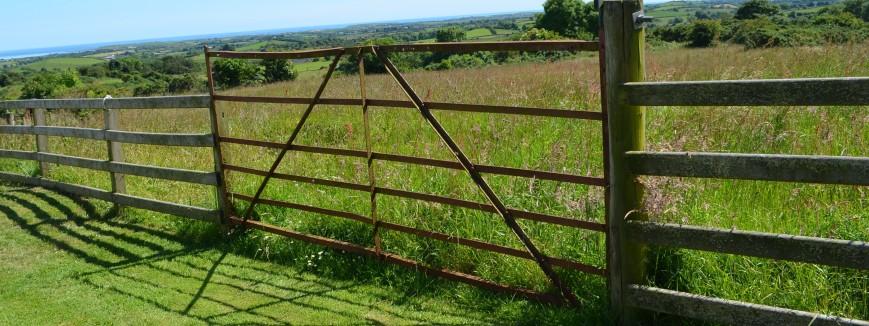 Herald Land-UK land investments